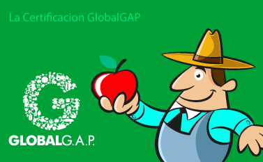 La Certificación Global GAP y sus Requisitos