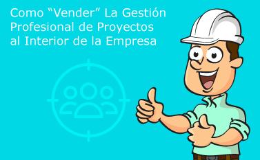 La Gestión de Proyectos al Interior de la Empresa