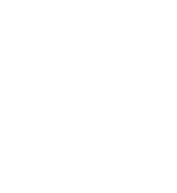 BSG Institute