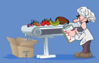 Implementador Lider ISO 22000 Seguridad e Inocuidad Alimentaria